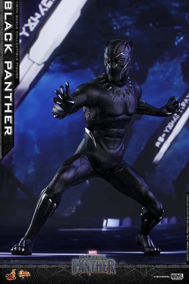 Hottoys Black Panther 1/6