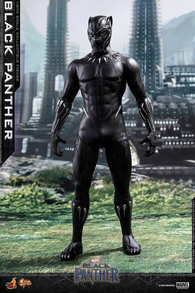 Hot toys Black Panther 1/6