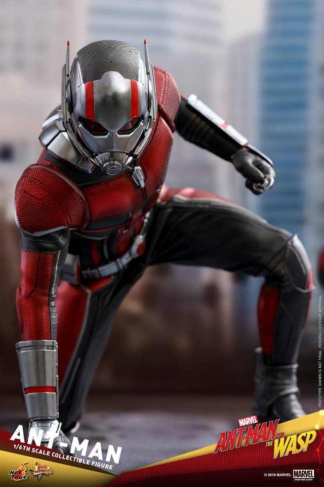โมเดล Ant-Man and the Wasp