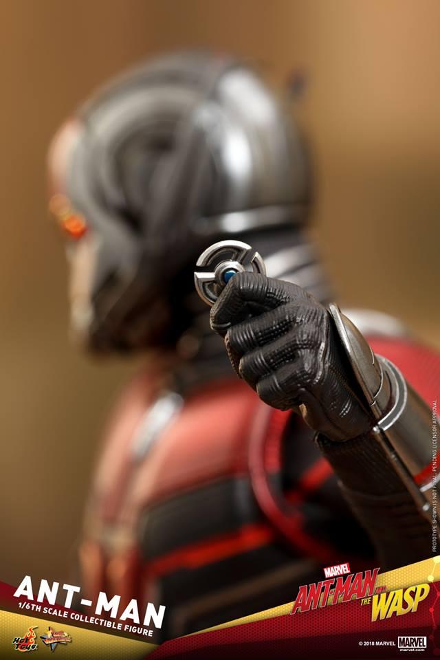 วงแหวนย่อส่วน Ant-Man and the Wasp